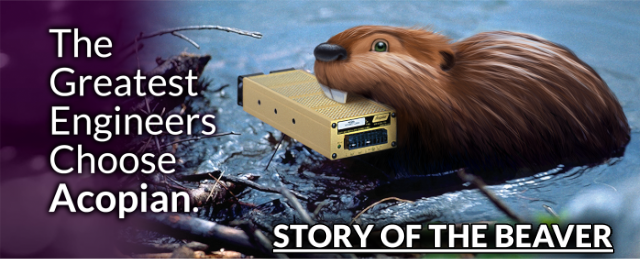 Story of the Beaver